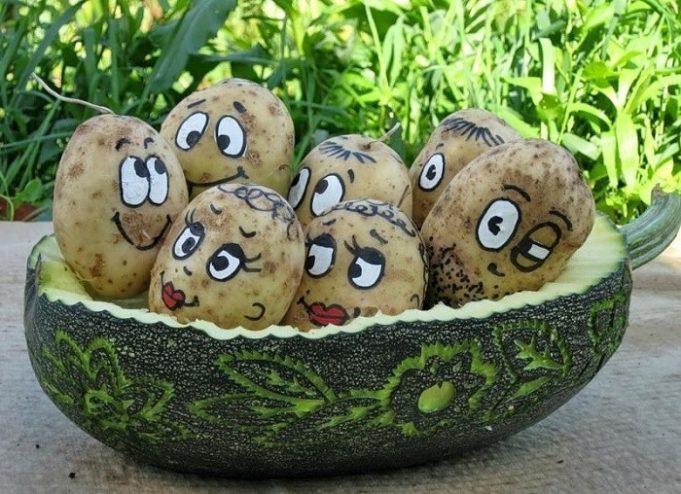 Какие поделки из картошки можно сделать своими руками 42
