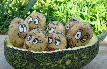 Поделки из картофеля фото