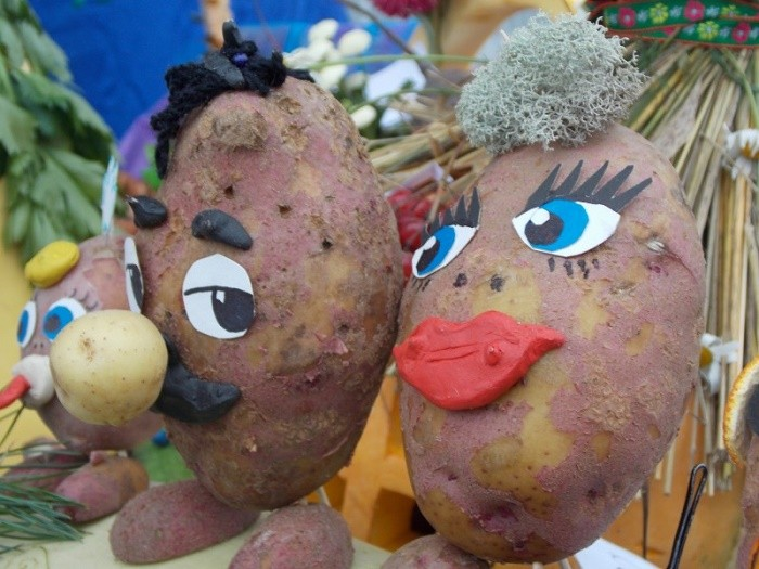 Поделки из картошки фото