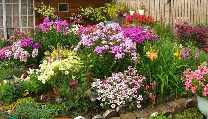 Советы по созданию цветника своими руками