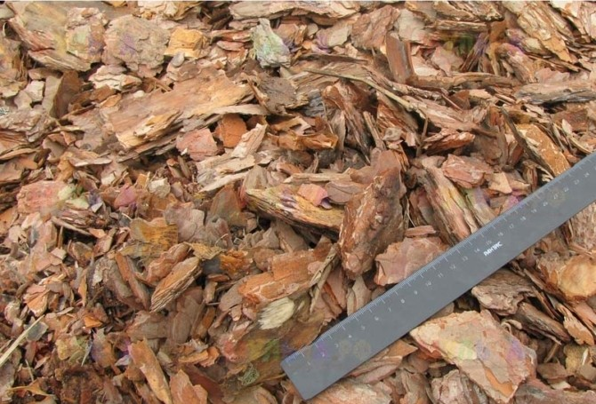 Дополнительные компоненты грунта, кора хвойных деревьев