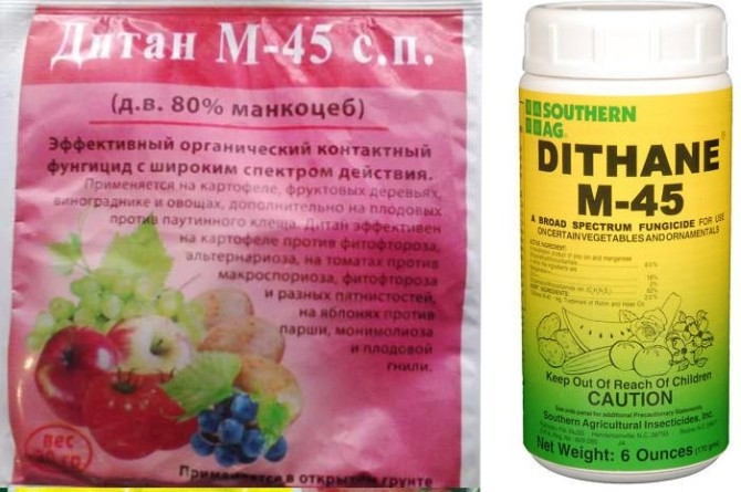 Дитан М-45 против фитофтороза картофеля