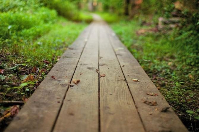 Садовая дорожка из дерева своими руками