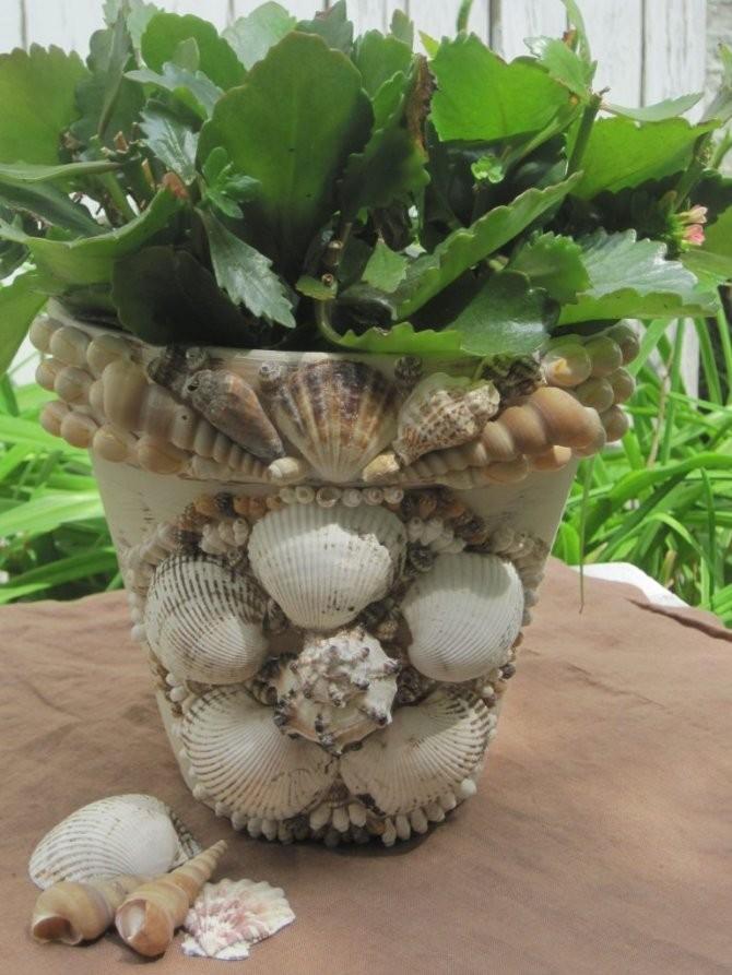 Как украсить ракушками цветочный горшок